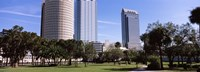 """Buildings in a city viewed from a park, Plant Park, University Of Tampa, Tampa, Hillsborough County, Florida, USA by Panoramic Images - 36"""" x 12"""""""