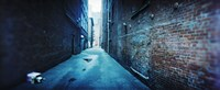 """Buildings along an alley, Pioneer Square, Seattle, Washington State, USA by Panoramic Images - 36"""" x 12"""""""