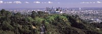 Griffith Park Observatory and Los Angeles in the background, California by Panoramic Images - various sizes