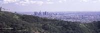 """Aerial view of Los Angeles from Griffith Park Observatory by Panoramic Images - 36"""" x 12"""""""