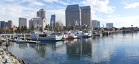 "Fishing boats docked at a marina, San Diego, California, USA by Panoramic Images - 36"" x 12"""