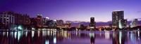 "Buildings lit up at night in a city, Lake Eola, Orlando by Panoramic Images - 36"" x 12"""