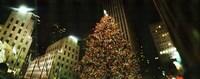 Christmas tree lit up at night, Rockefeller Center, Manhattan, New York State Fine Art Print