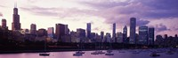 """Buildings at the Waterfront, Lake Michigan, Chicago (purple) by Panoramic Images - 36"""" x 12"""""""
