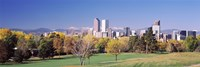 "Buildings of Downtown Denver, Colorado, USA by Panoramic Images - 36"" x 12"""