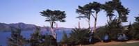 "Suspension bridge across a bay, Golden Gate Bridge, San Francisco Bay, San Francisco, California, USA by Panoramic Images - 36"" x 12"" - $34.99"