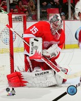 Jimmy Howard Gaurding Hockey Goal Fine Art Print