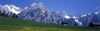 Field Of Wildflowers With Majestic Mountain Backdrop, Karwendel Mountains, Austria Fine Art Print