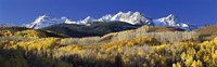 USA, Colorado, Rocky Mountains, aspens, autumn Framed Print