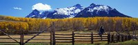 "Last Dollar Ranch, Ridgeway, Colorado, USA by Panoramic Images - 27"" x 9"" - $28.99"