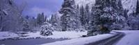 Winter Road Yosemite Park California USA