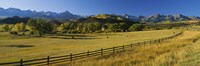 "Trees in a field, Colorado, USA by Panoramic Images - 27"" x 9"" - $28.99"
