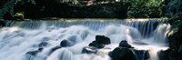 """Waterfall in a forest, Aberfeldy Birks, Perthshire, Scotland by Panoramic Images - 27"""" x 9"""", FulcrumGallery.com brand"""