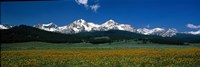 "Sawtooth Mtns Range Stanley ID USA by Panoramic Images - 27"" x 9"""