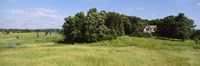 """House in a field, Otter Tail County, Minnesota, USA by Panoramic Images - 27"""" x 9"""""""