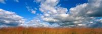 "Hayden Prairie, Iowa by Panoramic Images - 27"" x 9"", FulcrumGallery.com brand"