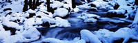"""Winter Yosemite National Park CA by Panoramic Images - 27"""" x 9"""""""