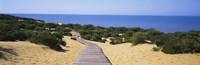 "Boardwalk on the beach, Cuesta De Maneli, Donana National Park, Huelva Province, Spain by Panoramic Images - 27"" x 9"", FulcrumGallery.com brand"