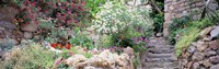 """Flowers in a garden, Tossa De Mar, Old town, Costa Brava, Catalonia, Spain by Panoramic Images - 27"""" x 9"""", FulcrumGallery.com brand"""
