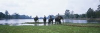 """Siem Reap River & Elephants Angkor Vat Cambodia by Panoramic Images - 27"""" x 9"""", FulcrumGallery.com brand"""