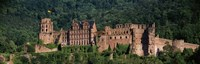 """Castle on a hillside, Heidelberg, Baden-Wurttemberg, Germany by Panoramic Images - 27"""" x 9"""", FulcrumGallery.com brand"""