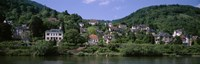 "Houses on a hillside, Neckar River, Heidelberg, Baden-Wurttemberg, Germany by Panoramic Images - 27"" x 9"""