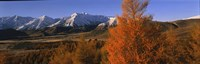 """Castle Hill Basin Torlesse Mountains New Zealand by Panoramic Images - 27"""" x 9"""""""