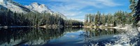 """Reflection of trees in a lake, Yellowstone National Park, Wyoming, USA by Panoramic Images - 27"""" x 9"""""""