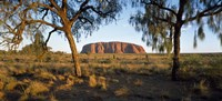 "27"" x 9"" Ayers Rock Pictures"