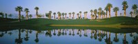 """Golf Course Marriot's Palms AZ by Panoramic Images - 27"""" x 9"""""""