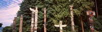 Totem poles in a park, Stanley Park, Vancouver, British Columbia, Canada Fine Art Print