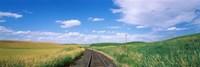 Railroad track passing through a field, Whitman County, Washington State, USA Fine Art Print