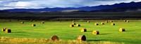 Haystacks Field Jackson County Colorado USA