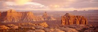 "Rock formations on a landscape, Canyonlands National Park, Utah, USA by Panoramic Images - 27"" x 9"""