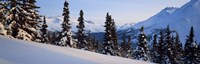 """Winter Chugach Mountains AK by Panoramic Images - 27"""" x 9"""""""