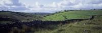 Stone wall on a landscape, Republic of Ireland Fine Art Print