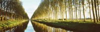 """Belgium, tree lined waterway through countryside by Panoramic Images - 27"""" x 9"""""""