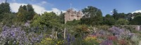 """Crathes Castle Scotland by Panoramic Images - 27"""" x 9"""" - $28.99"""
