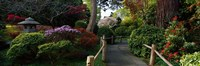 "Japanese Tea Garden, San Francisco, California, USA by Panoramic Images - 27"" x 9"", FulcrumGallery.com brand"