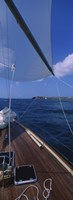 """Sailboat racing in the sea, Grenada by Panoramic Images - 9"""" x 27"""""""
