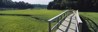 """Boardwalk in a field, Nauset Marsh, Cape Cod, Massachusetts, USA by Panoramic Images - 27"""" x 9"""", FulcrumGallery.com brand"""