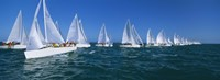 """Sailboats racing in the ocean, Key West, Florida by Panoramic Images - 27"""" x 9"""""""