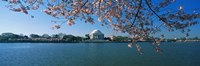 Monument at the waterfront, Jefferson Memorial, Potomac River, Washington DC, USA Fine Art Print