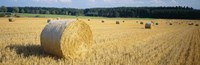 """Bales of Hay Southern Germany by Panoramic Images - 27"""" x 9"""", FulcrumGallery.com brand"""