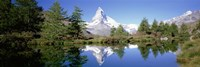 Reflection of trees and mountain in a lake, Matterhorn, Switzerland Fine Art Print