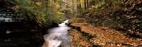 Buttermilk Creek, Ithaca, New York State, USA Fine Art Print