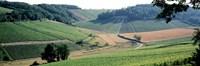 France Chablis Vineyards