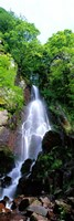 """Waterfall Alsace France by Panoramic Images - 9"""" x 27"""", FulcrumGallery.com brand"""