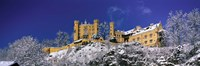 "Hohenschwangau Castle (Schloss Hohenschwangau) Schwangau Germany by Panoramic Images - 27"" x 9"" - $28.99"