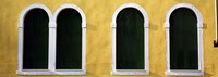 """Windows in Yellow Wall Venice Italy by Panoramic Images - 27"""" x 9"""""""